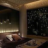 Wall Stickers ,Naladoo low In The Dark Star Wall Stickers 407Pcs Luminous Dots Wall Stickers Kids Room Decor