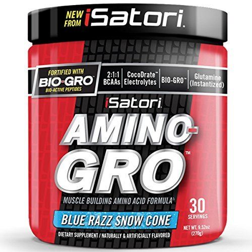 ISatori AMINO-GRO Blue Razz Snow Cone 30 serv - Branched Chain Amino Acid Formula - Faster Recovery, Muscle Building