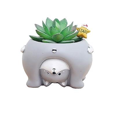 Youfui Cute Cat Flowerpot Animal Resin Succulent Planter Desk Mini Ornament (Cat): Garden & Outdoor