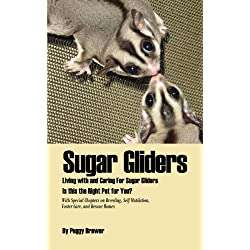 Sugar Gliders: Living with and Caring For Sugar Gliders Is this the Right Pet for You?