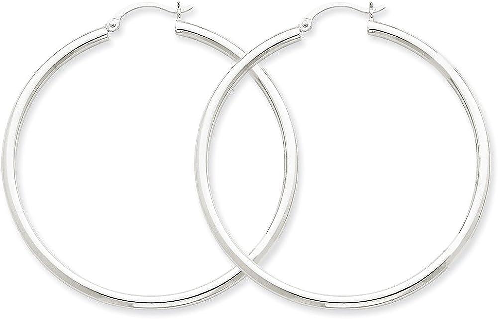 Lex /& Lu 14k White Gold 2.5mm Round Hoop Earrings LAL81464