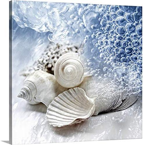 Seashells Washed Ashore Canvas Wall Art Print