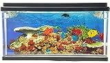 Jelly Fish / Sea Turtle Aquarium with LED Lights 3D Backing - Stunning! Fantastic Gift (Fish & Sea Turtle)