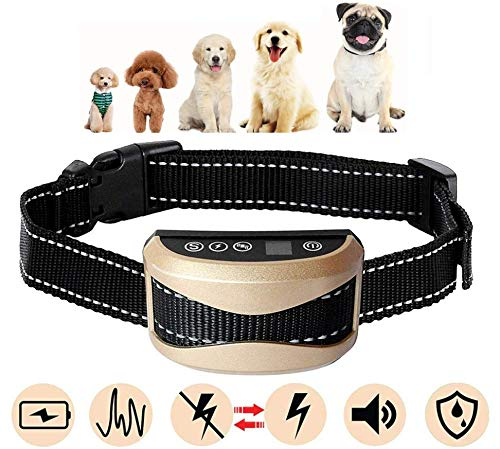 DTLake Bark Collar Small Dog for Medium Dogs Large beep Sound Ultrasound Harmless Shock with USB Rechargeable Dog Bark Collar Safe Control Device (Gold)