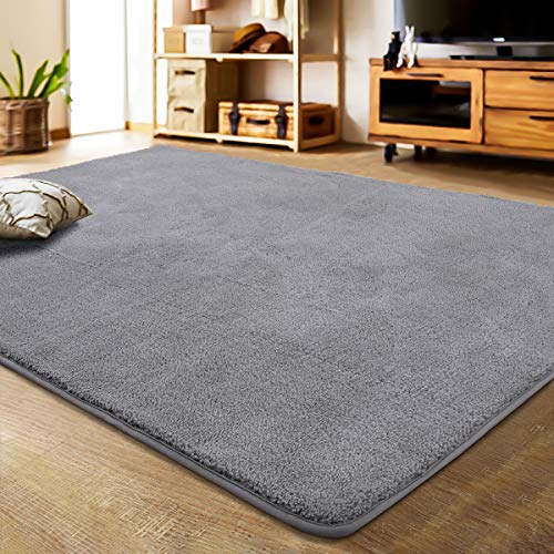 LOCHAS Soft Shag Area Rug for Bedroom Living Room, Modern Indoor Fuzzy Rugs, Washable Shaggy Carpet for Floor, Home, Kids, Dorm, 3 x 5 Feet Grey