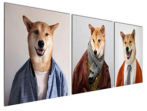 Gardenia Art Animal World Series 29 Mr Shiba 1 Canvas Wall A