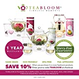 Teabloom Modern Classic Insulated Cups - Double
