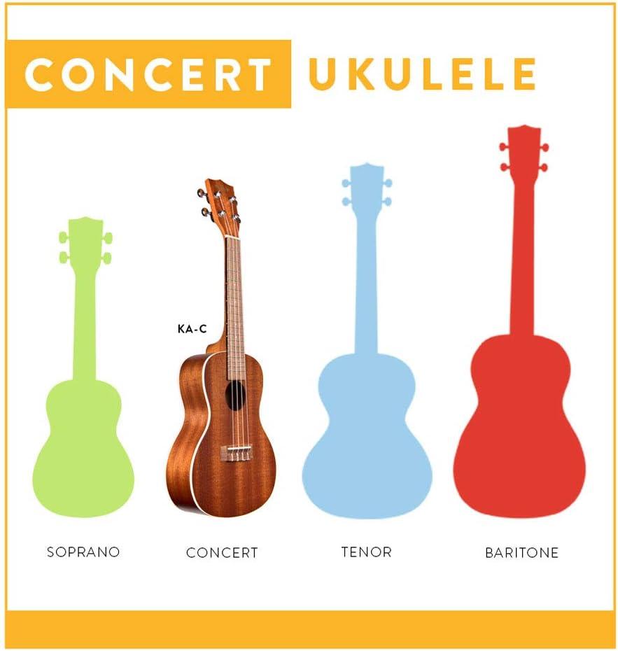 Kala KAC - Ukelele, clavijero de engranajes, acabado satinado: Amazon.es: Instrumentos musicales