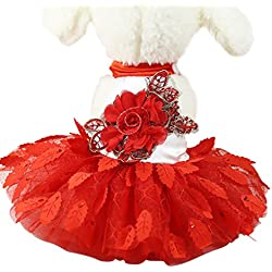 kaifongfu Wedding Dress Pet For Small Dogs,Leaves Dress Cat Lace Skirt Party Princess Pet Apparel (M, Red)