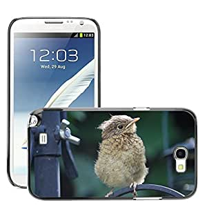 GoGoMobile Slim Protector Hard Shell Cover Case // M00124765 Robin Fledgling Bird Chick Perched // Samsung Galaxy Note 2 II N7100