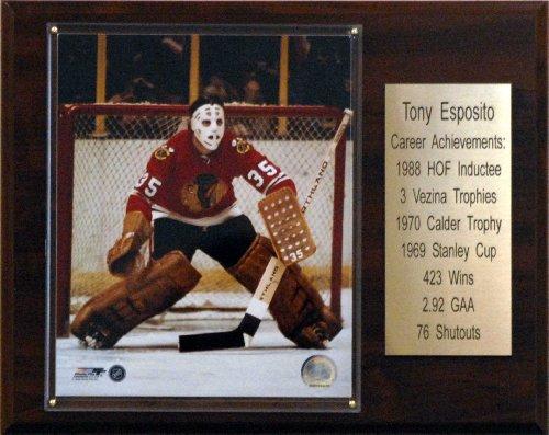 NHL Tony Esposito Chicago Blackhawks Career Stat Plaque
