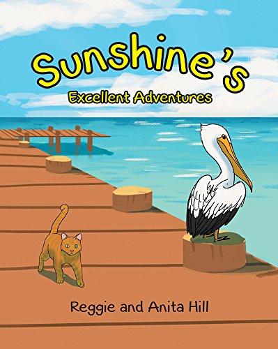 Sunshine's Excellent Adventures