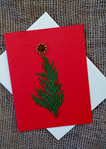 Package Holiday Card - Fresh Weeping Nootka Cypress
