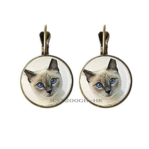 Pendientes para amantes de los gatos, regalo para el día de la ...