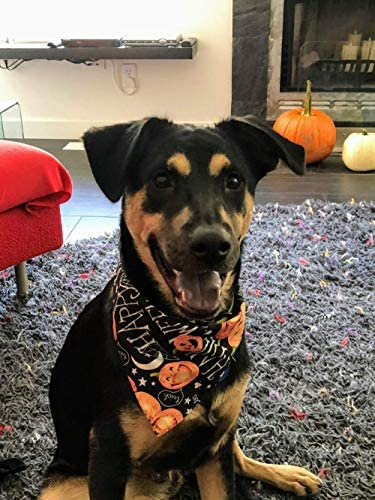 KZHAREEN 4 PCS/Pack Halloween Dog Bandana Pumpkin Reversible Triangle Bibs Scarf Accessories for Dogs Cats Pets 25
