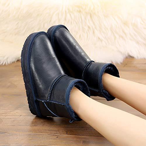 Tube En Plate Augmenté forme Neige Imperméable Plein Pu Shukun Bottes Femmes Blue Coton Hiver Air Court Chaussures Courtes v5YSqxIw
