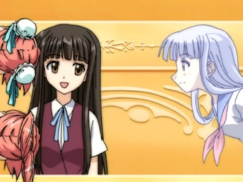 Yesterday's foe is todays friend. Good enough friends to have fights. No doesn't always mean no. Negima Girl
