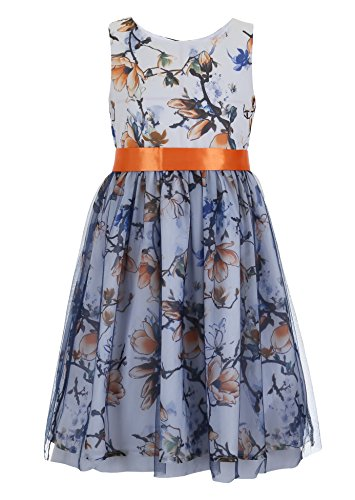 Emma Kids Dress (Emma Riley Girls' Floral Printed Dress with Tulle Skirt 6 Light blue)