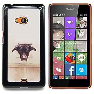 Stuss Case / Funda Carcasa protectora - Perro Vignette Marrón Negro Labrador - Nokia Lumia 540
