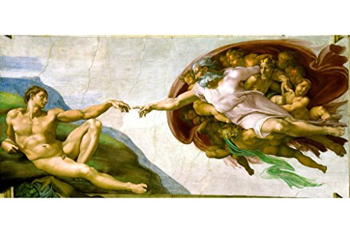 Laminated Michelangelo The Creation Adam Fresco Sistine Chapel Ceiling Sign Poster 12x18 ()