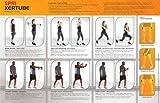 SPRI-Xertube-Resistance-Band-Exercise-Cords-All-Cords-Sold-Individually