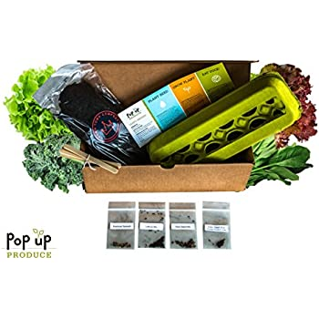 All In One Organic Vegetable Home Garden Container Compost And Seed Starter Kit