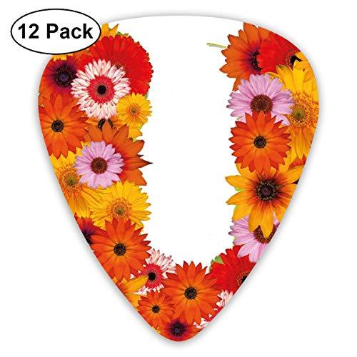 Guitar Picks - Abstract Art Colorful Designs,Pink Orange Yellow Wildflowers Warm Season Plants Romantic Arrangement Letter U,Unique Guitar Gift,For Bass Electric & Acoustic Guitars-12 ()
