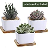 3.3 Inch White Ceramic Contemporary Square Design Succulent Plant Pot/ Cactus Plant Pot With Bamboo Tray - Pack of 3