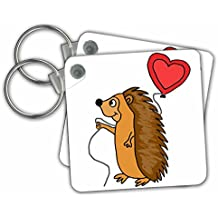 3dRose All Smiles Art Love - Funny Cool Hedgehog with Love Balloon Cartoon - Key Chains
