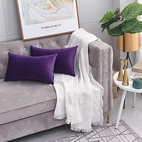 Soft Velevet Soild Decorative Square Throw Pillow Covers Cushion Cases Pillowcases for Couch Sofa Bedroom Car 12 x 20 Inch 30 x 50 cm,Pack of 2 Purple (Silver Pillows And Purple)
