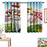Best Avon Cat Trees - BlountDecor Kids Decorative Curtains for Living Room Colorful Review