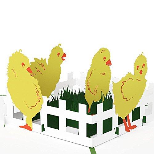 Lovepop Baby Chicks