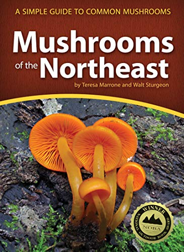Mushrooms of the Northeast: A Simple Guide to Common Mushrooms (Mushroom Guides) (Best Wood For Decks In Canada)