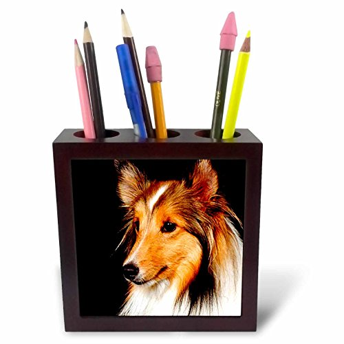 Dogs Sheltie/Shetland Sheepdog - Sheltie Shetland SheepDog - 5 inch tile pen holder (Sheltie Porcelain)