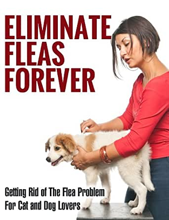 Eliminate Fleas Forever: Getting Rid of The Flea Problem ...