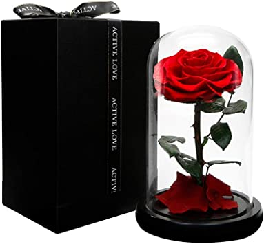 Amazon Com Dakotan Forever Rose Eternal Rose With Real Fallen Petals In Luxury Glass Dome With Wooden Base And Elegant Gift Box Gift For Valentine S Day Mother S Day Wedding Anniversary Birthday,Joanna Gaines Shiplap Bedroom