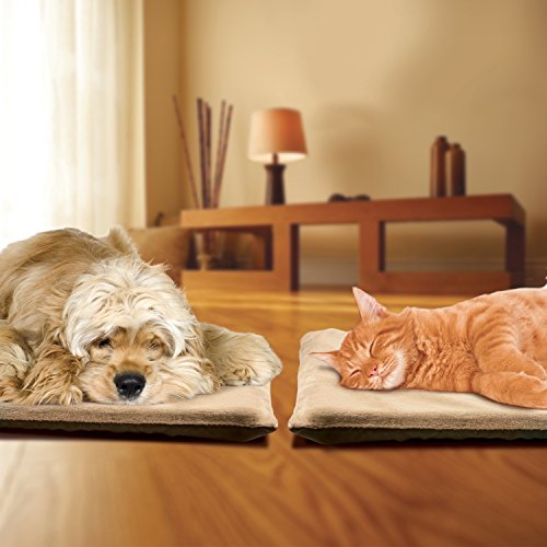 sunbeam heated bed - 3