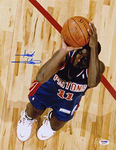 Isiah Thomas Autographed Signed 11X14 Photo Detroit Pistons PSA/DNA Autographed Signed