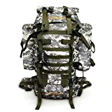 Lucky Gourd 80l Sport Outdoor Military Rucksacks Tactical Molle Backpack Camping Hiking Trekking Bag with Rain Cover (Grey)