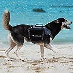 ThinkPet Outdoor Dog Backpack Reflective Saddle Bag - Dog Pack Double Bag for Hound Travel Rucksack for Medium Large Dogs 10