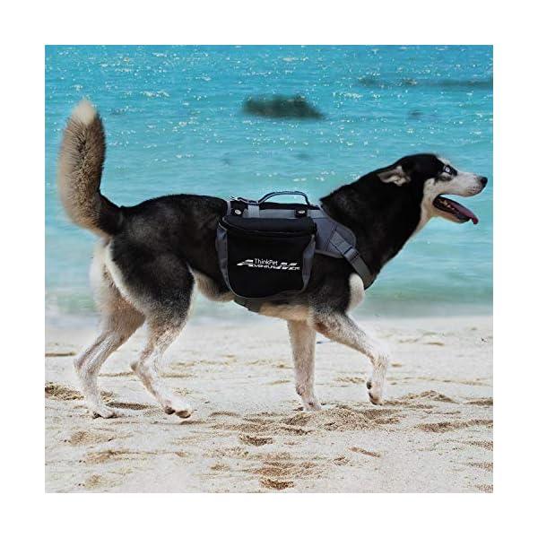 ThinkPet Outdoor Dog Backpack Reflective Saddle Bag - Dog Pack Double Bag for Hound Travel Rucksack for Medium Large Dogs 3