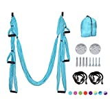DYNAMIC SE Nylon Yoga Swing Set Includes Suspension Ceiling Mounts with Screws and Straps