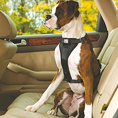 Kurgo Tru-Fit No Pull Dog Harness, Easy Walking Harness, Quick On and Off Harness With Pet Seat Belt Tether for Car from Motivation Design, LLC