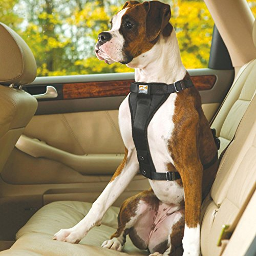 Kurgo Tru-Fit No Pull Dog Harness and Easy Dog Walking Harness with Pet Seatbelt Tether for Car