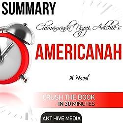 Summary of Chimamanda Ngozi Adichie's Americanah