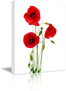 """Canvas Prints Wall Art - Red Poppy Flowers Against White Background 
