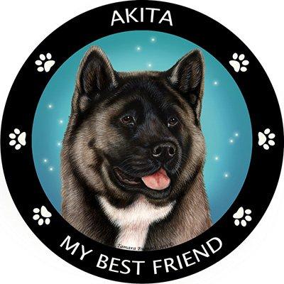 Silver Akita My Best Friend Magnet