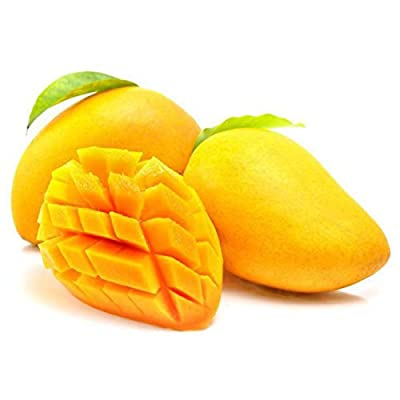 Mango Seeds, Mini Mango Tree Seeds, Bonsai Tree Seed, Organic Heirloom Fruit Seeds, Pot Plant for Home Garden Cheap! 1 Seed : Garden & Outdoor