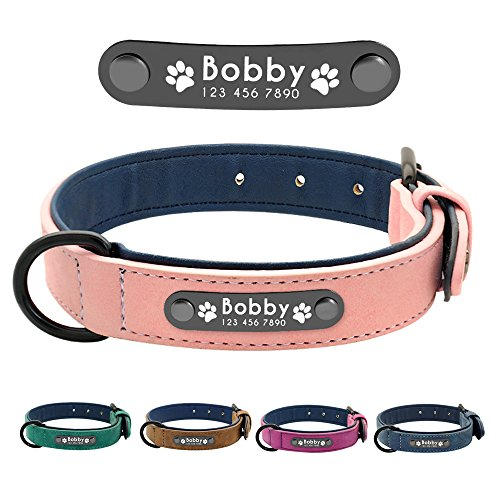 Didog Leather Custom Dog Collar,Engraved Dog Collars with Personalized Nameplate,Padded Custom Collar for Small Medium Large Dogs,Pink XL (Leather Nameplate)