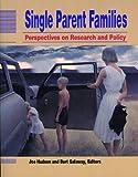 Single Parent Families, Joe Hudson and Burt Galaway, 1550770462